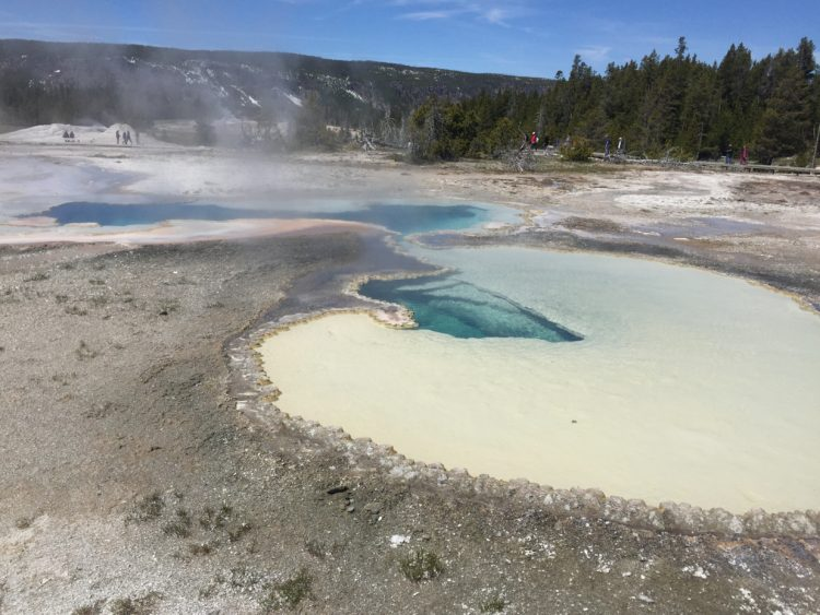 Yellowstone Highlights