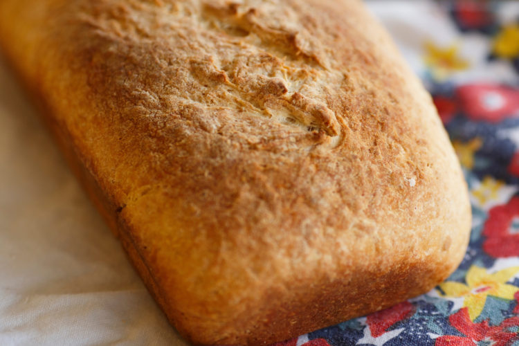 Homemade honey oat bread is pictured on Tuesday, Nov. 15, 2016, in Bloomington, Indiana. (Photo by James Brosher)