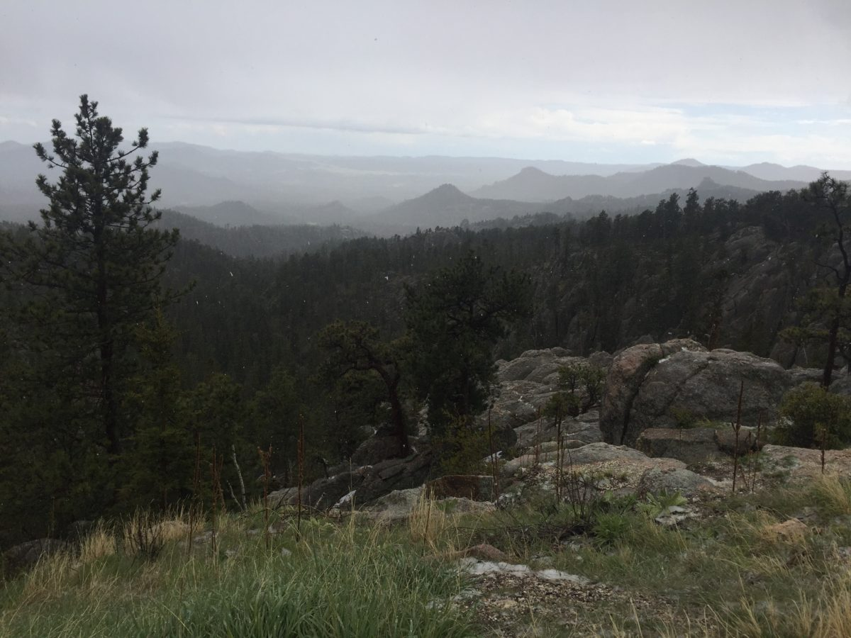 South Dakota's Black Hills