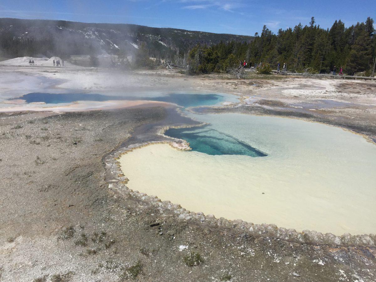 Yellowstone Highlights